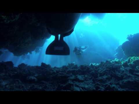 "DIE BUCHT ""The Cove"" - DVD Trailer 11.03.10"