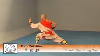 Repeat youtube video Shaolin Xiao Hong Quan Form