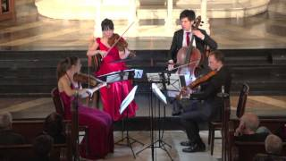 "Attacca Quartet plays Haydn Op. 76 no. 2 ""Fifths"" -- Fourth Movement"