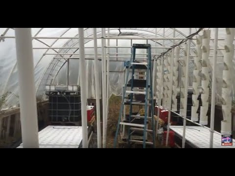 Off Grid solar powered greenhouse aquaponics system build by OFF GRID CONTRACTING