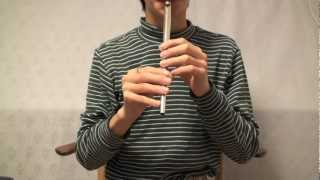 The Lord of the Rings; Concerning Hobbits Tin Whistle Cover