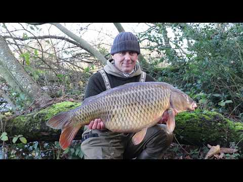 Carp Fishing With Maggots