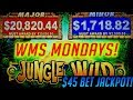 JACKPOTS EVERYWHERE! MULTIPLE HUGE WINS! Jungle Wild Baby! 🍀 WMS Mondays! S1E9 🍀