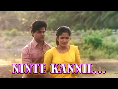 Ninte Kannil...- Deepasthambham Mahascharyam Movie Song   Dileep   Jomol