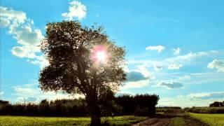 Prolazi jesen - Ljubisa Pavkovic - instrumental