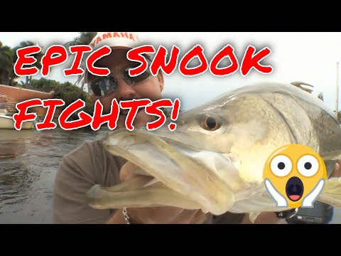 SNOOK FIGHT COMPILATION With Capt. Rick Murphy | Florida Insider Fishing Report