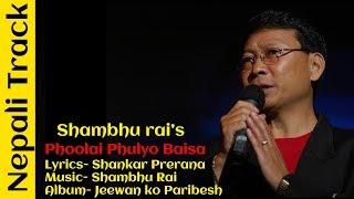 Phoolai Phulyo Baisa Phulyo (TRACK) || Best Of Shambhu rai || Nepali Song's Track