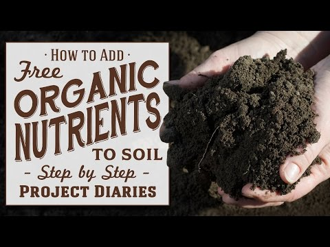 ★ How to: Add Free Organic Nutrients to Soil (A Complete Guide to Reusing old Soil)