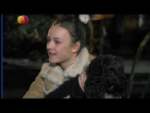 ШИКАРНЫЙ Фильм 2019 ٭٭ ЗАМУЖ ЗА БОМЖА ٭٭ Русские мелодрамы 2018 новинки HD   YouTube