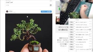 雑然と雑談と苔盆栽_20180922_黒瀬配信 thumbnail