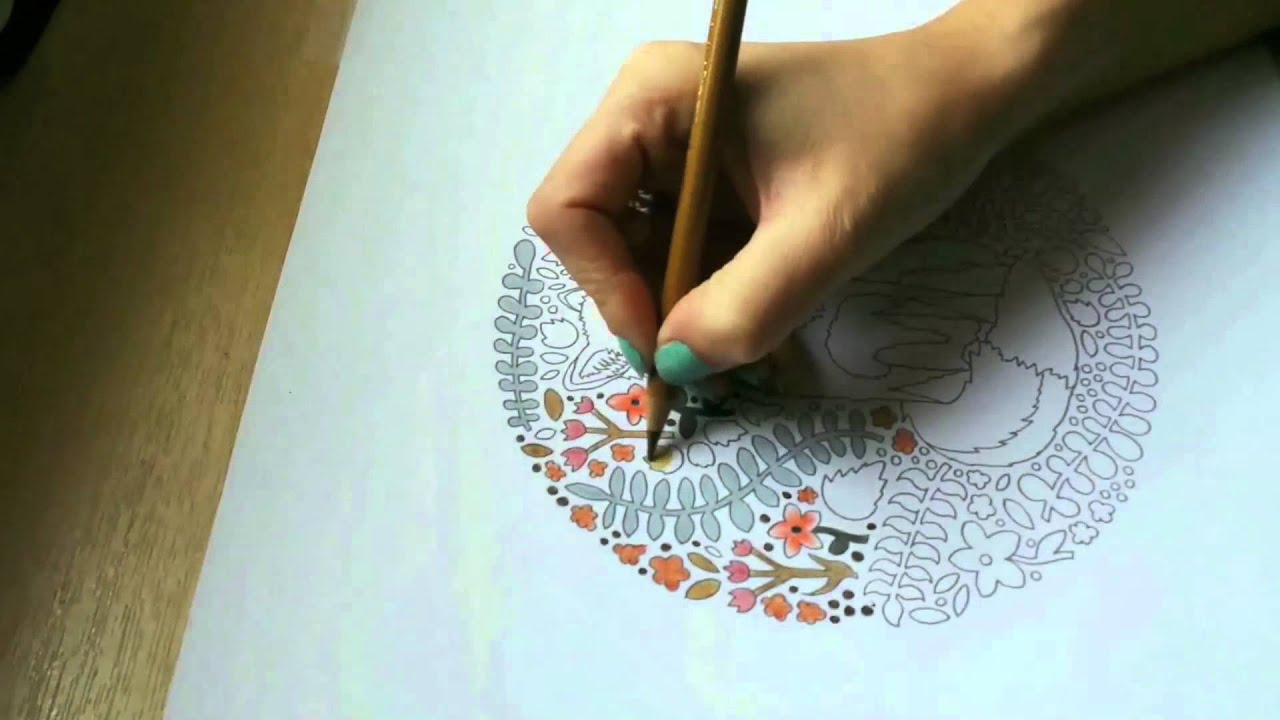 Jessica Lennox Colours The Little Book Of Colouring Animal Kingdom From Peace In Your Pocket