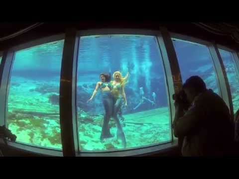 My experience at Weeki Wachee mermaid theater !