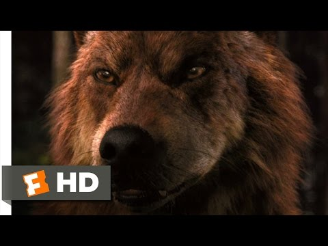 The Twilight Saga: Breaking Dawn - Part 1 (8/9) Movie CLIP - Jacob Imprints (2011) HD