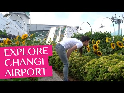 Exploring Changi Airport in Singapore