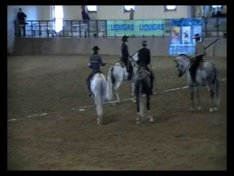 Ubrique - Cattle Cutting Section - European Working Equitation Championships - Sardinia 2008