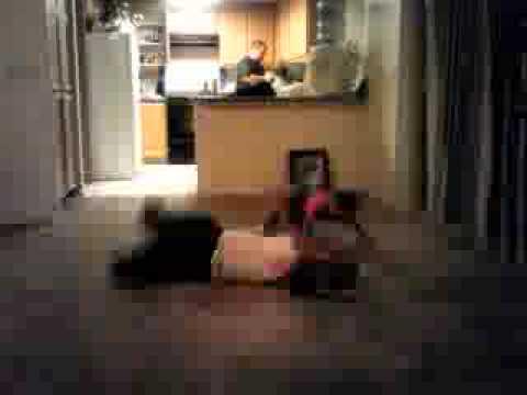 Wee Matt Dances & Gets Beaten up by a baby