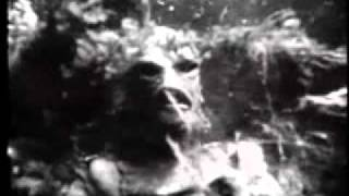 Creature from the Black Lagoon (1954) - Trailer