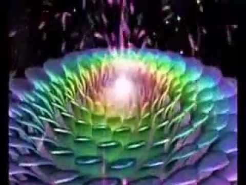 Consciousness Drives The Universe