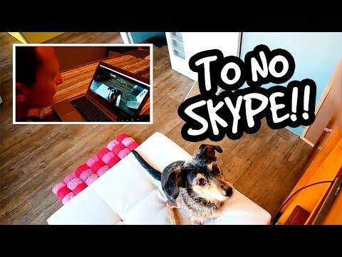Estopinha conversa no Skype!!