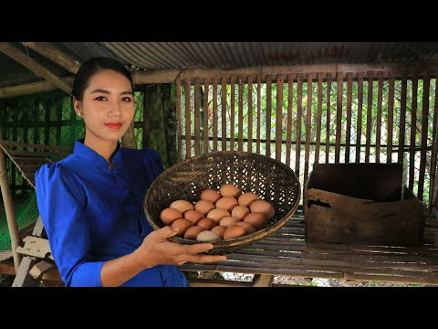 Fresh chicken egg in my homeland and cooking food - Healthy food
