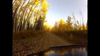 "Video 2012 fall drive. ""toppless hitchhiker"" download MP3, 3GP, MP4, WEBM, AVI, FLV November 2017"