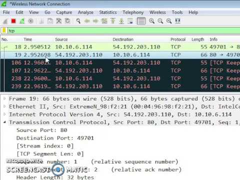 Wireshark in TCP header