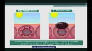 Что такое астаксантин?
