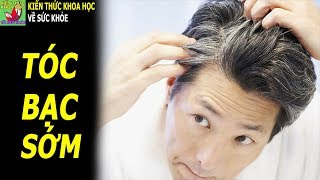 Tóc bạc sớm nên ăn gì để tóc đen trở lại không lo gãy rụng