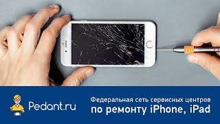 Pedant.ru - ремонт iPhone за 20 минут