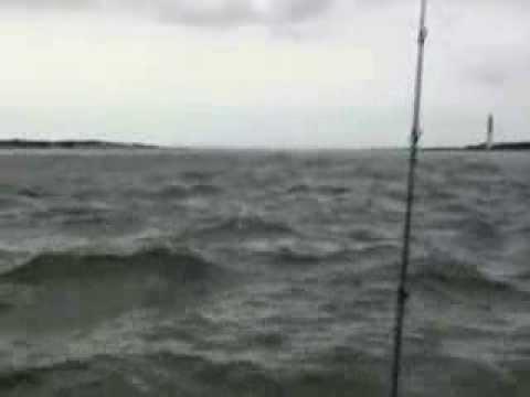 26jul2013 barnegat bay fishing adventure youtube for Barnegat bay fishing