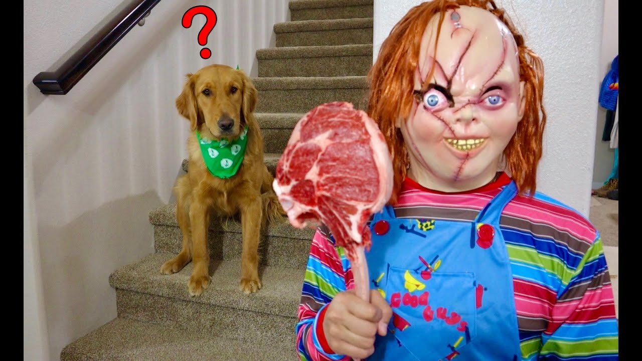 Chucky Surprises Puppy with Giant Steak!