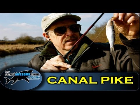 Canal Fishing Tips For Pike - The Totally Awesome Fishing Show