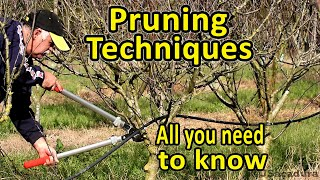 Pruning Fruit Trees | Pruning Techniques | Essential Pruning Course