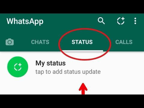 Whatsapp Status Feature Explained Urduhindi