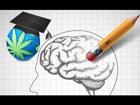 Can Weed Permanently Damage Short Term Memory