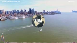 Cartoon - On & On feat. Daniel Levi (New York Timelapse 2K Video)