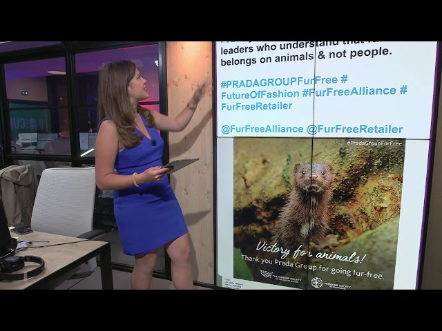 Prada to ban fur from products by 2020 | #TheCube