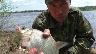 Первые МОИ ТРОФЕИ В 2021 ГОДУ Рыбалка на донки на реке ОКА