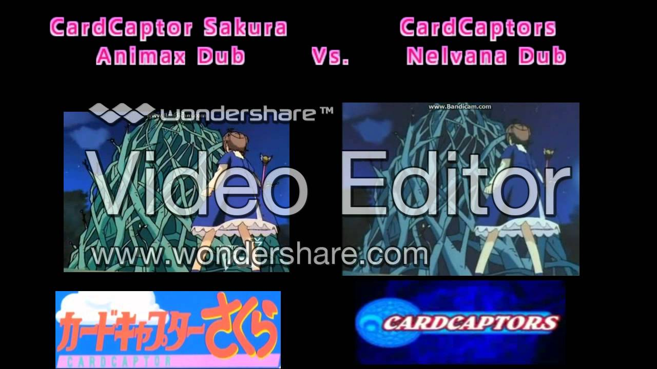 cardcaptor sakura animax dub vs nelvana dub version differences
