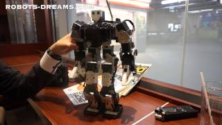Yoshihiro Shibata - Thunderbolt Robot Hip/Leg Design For Effective Walking Gait
