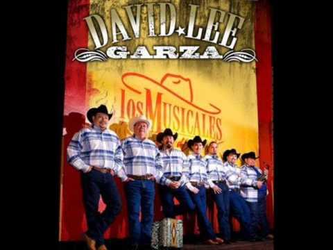 David Lee Garza - Que Tristeza