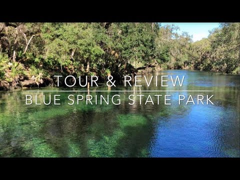 Blue Spring State Park Tour & Review
