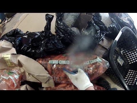 Dumpster Diving – Black Bag Surprise – Health Food Haul