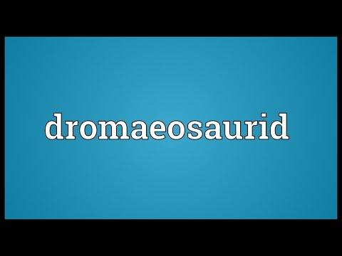 Dromaeosaurid Meaning