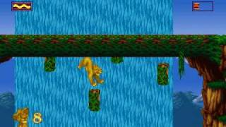 The Lion King (PC/DOS game) Pt. 6