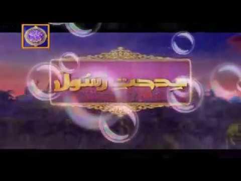 Ishq ke Rang Main Rang jao Mere Yar ! Naat-e-Rasool (saw)