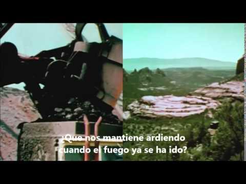 dont fight it - the panics subtitulos español