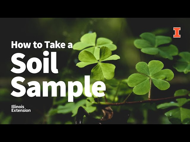 How to Take a #Soil Sample in Your Lawn, Garden, or Landscape