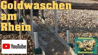 Goldwaschen in Deutschland - 48 - Goldwaschen am Rhein