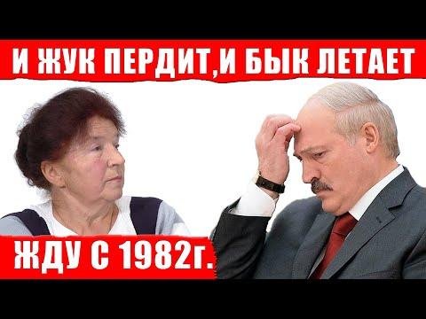 27 лет  жук пердит и бык летает, а Лукашенко и не знает!